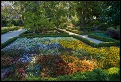 Giardino Botanico Reale