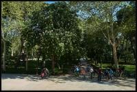 Parco Del Retiro