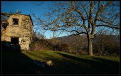 Borgo Rivarossa