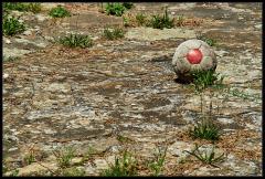 Pallone di quoio