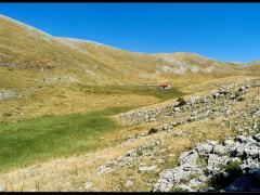Paesaggio montano